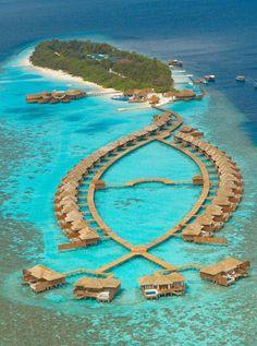 Love this :) Lily Beach Resort & Spa, Maldives. Four Seasons Resort Maldives Vacation Places, Vacation Destinations, Dream Vacations, Vacation Spots, Places To Travel, Places To See, Holiday Destinations, Vacation Ideas, Maldives Voyage