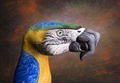 Découvrez les fantastiques peintures sur mains de Guido Daniele