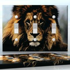 DIY Do It Yourself Home Decor - Easy to apply wall plate wraps   Eyes of Leo  Grunge lion face  wallplate skin sticker for 3 Gang Toggle LightSwitch   On SALE now only $5.95