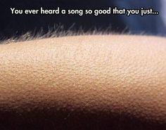 You Gotta Love Music