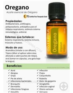 Oregano do Terra Oregano Essential Oil, Oregano Oil, Essential Oil Blends, Doterra Blends, Doterra Essential Oils, Young Living Essential Oils, Young Living Oregano, Esential Oils, Healthy Oils