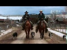 Last American Cowboy on the Animal Planet. Have you seen it? You should!   2 seasons and I've seen every episode, I love it!!