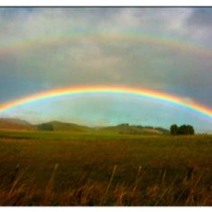 "This is an awesome rainbow....reminds me of ""rainbows bridge"" which I will go to see my baby ""skip"" one day.........."