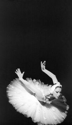 Plisetskaya Shchedrin FoundationФотогалерея Show Dance, Dance Music, Ballet Art, Ballet Dancers, Dance Photos, Dance Pictures, Swan Lake Ballet, Mikhail Baryshnikov, Vintage Ballet