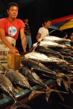 Fish market in Borneo, Malaysia