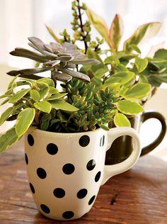 coffee mug planter
