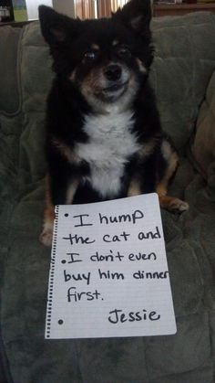 I hump the cat and I don't even buy him dinner first.  ~ Jessie