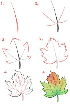 Easy Flower Drawings, Fall Drawings, Beautiful Flower Drawings, Pencil Drawings Of Flowers, Flower Drawing Tutorials, Flower Art Drawing, Leaf Drawing, Flower Sketches, Basic Drawing