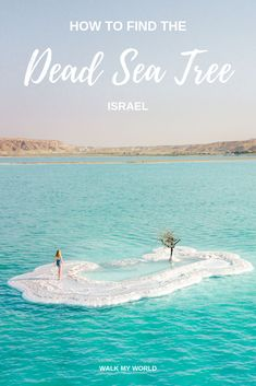 How to find the iconic Dead Sea Tree - the exact location Everything you need to know to find the stunning Dead Sea Tree: where it is, how hard it is to swim to (with a few tips) and the best time to visit when fewer people will be around. Middle East Destinations, Travel Destinations, Travel Advice, Travel Guides, Travel Goals, Travel Info, Travel Tips, Cool Places To Visit, Places To Go
