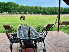 Fall in love with Ardmore Guest Farm - B&B accommodation in Champagne Valley, Drakensberg, just below the majestic Champagne Castle and Cathkin Peak mountains of KZN. Click on pic to see more. Ardmore Guest Farm has 16 beautiful units to choose from, and we cater for groups of all sizes. Enjoy the mountain view swimming pool, large dam for fishing (bass) & bird watching; or explore our surrounding hills on foot or on our mountain bikes. Mountain View, Mountain Biking, Kwazulu Natal, Outdoor Furniture Sets, Outdoor Decor, Bass Fishing, Bird Watching, Bed And Breakfast, Swimming Pools