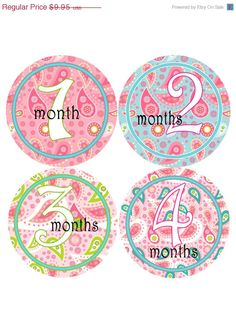 ON SALE Monthly Baby Stickers Baby Girl by MaineMomBoutique, $8.96