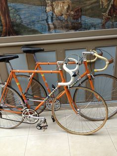 Eddy Merckx Team Molteni bikes