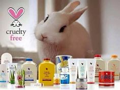 Cruelty free.... Take a look at the range of cruelty free products at www.feel-good-aloe.myforever.biz/store