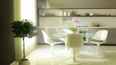 Retro Green White Dining Suite With Green Indoor Plant In White Round Pots: Modern Open Kitchen Shelves Inspiration Design Adopted Minimalist Style