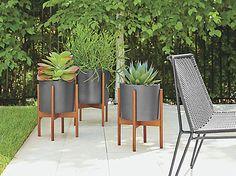 Ceramic and walnut modern planters