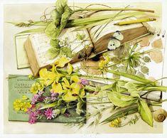 *Watercolor ~ Dutch artist Marjolein Bastin!