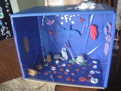 apologia swimming creatures box ideas