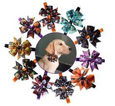 Halloween Pet Bow Ties from MissTaken's Boutique Pet Puppy, Dog Cat, Cat Tie, Tie Accessories, Dog Bows, Christmas Animals, Halloween Christmas, Dog Supplies, Bow Ties