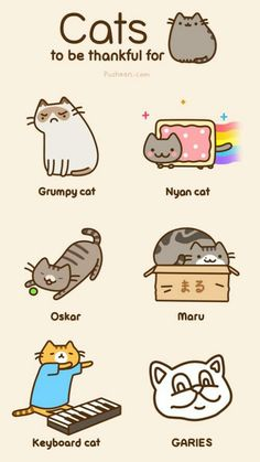 QUIZ: Which Famous internet cat are you? Answer just a few questions to see the most adorable cats ever! (Including Pusheen and Nyan Cat) Nyan Cat, I Love Cats, Crazy Cats, Cute Cats, Funny Cats, Gato Pusheen, Pusheen Love, Pusheen Stuff, Grumpy Cat