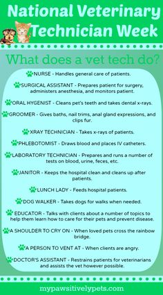 What exactly do veterinary technicians do? They are like the animal nurses of the animal nurses of the veterinary world, and there is't much they can't do! Vet Tech Quotes, Tech Humor, Veterinary World, Veterinary Medicine, Medicine Humor, Veterinary Receptionist, Veterinarian Technician, Veterinarian Quotes, Vet Tech Student