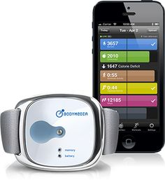 BodyMedia LINK - the body monitoring system.