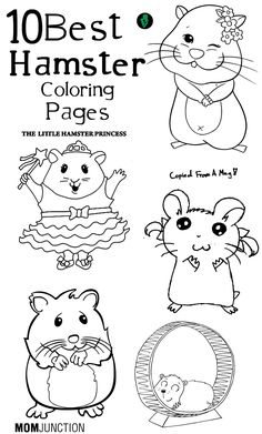 10 Best Hamster Coloring Pages Your Toddler Will Love To Color