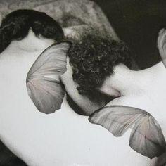3 sleeping fairies , matt A4 print. £7.00  Fairy at prints for adults