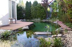 Naturpool Guntramsdorf River, Outdoor Decor, Water Pond, Swimming, House, Rivers