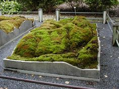 Notice how the stone edge artfully frames the composition of this moss garden.  #SALandscape