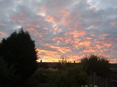 Sunset taken in my back garden in Loughton (Essex sunsets are amazing)