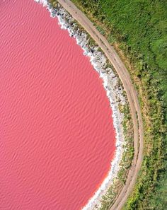 Lake Retba or Lac Rose is located in the north of the Cap Vert peninsula of Senegal. It got its name due to the Dunaliella salina algae making its water look like strawberry milk shake. Pink color is clearly visible during the dry season. Lago Retba, Oh The Places You'll Go, Places To Travel, Lac Rose, Lake Hillier, Beautiful World, Beautiful Places, Cap Vert, National Parks