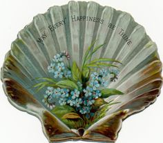 """May Every Happiness Be Thine""... Vintage Seashell postcard with ""Forget-me Nots"" ."