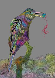 Beautiful bird illustration