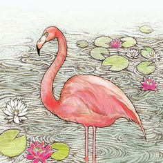 Leading Illustration & Publishing Agency based in London, New York & Marbella. Hand Illustration, Colouring Pages, Adult Coloring, Flamingo, Rooster, Greeting Cards, Lily, Prints, Gardens
