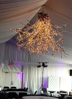 Beautiful Chandalier  1. pick up driftwood out of local lake  2. spray paint white  3. cover with thousands of white lights with white cord  4. plug in and hang.