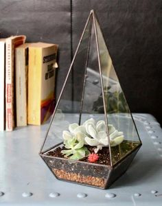 Make a small monument of your house plants by putting them inside this handmade clear glass obelisk. $120