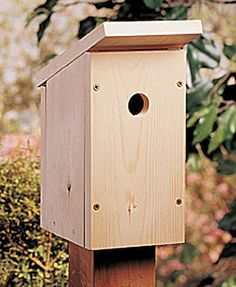 Birdhouse for Beginners  With its classic good looks, this one-board birdhouse will fit anywhere.