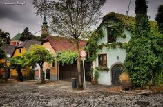 Eduardo Balogh Photography Szentendre, Rab Ráby tér Places To See, Places Ive Been, I Want To Travel, Budapest Hungary, Eastern Europe, Homeland, Beautiful Places, Country, World