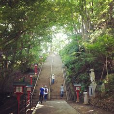 """""""Yesterday three of us set off from Shinjuku to climb Takao-san! Such a super fun day. Fresh air. Cicadas. Amazing views. The sweet smell of hinoki. Dragonflies. Incredibly beautiful trees."""""""