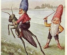 ride that cricket