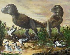 Acrylic on canvas; A pair of Gorgosaurus libratus (Albertosaurus, if you prefer) crash through swampy fen on a late Cretaceous evening. The flora and fauna shown here are roughly ...