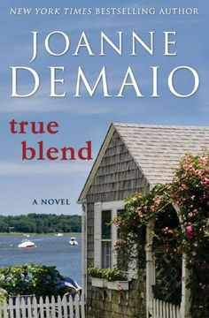From New York Times bestselling author Joanne DeMaio comes a riveting love story that asks if a silver-shingled beach cottage can heal two broken...