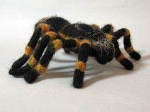 Vogelspinne gefilzt, Filzfigur ,Spinne, felted spider
