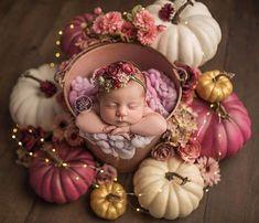 New Baby Boy Photography Props Newborn Session Ideas Fall Newborn Pictures, Fall Baby Pictures, Newborn Baby Photos, Baby Girl Photos, Fall Pics, Halloween Baby Pictures, Newborn Twins, Newborns, Foto Newborn