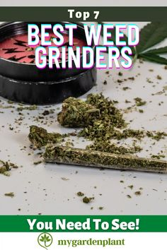 Weed grinders are one of the most essential paraphernalia for every cannabis user. Be it for medical or leisure purposes, this helps you make the most out of your stash. This simple device can transform your buds into fine particles. So, it is making it easier for you to use, store, and much pleasurable to smoke. If you do not have the time to spend on reading the entire article, feel free to proceed right through our top picks. Easy Garden, Indoor Garden, Garden Plants, Garden Ideas, Gardening Tools, Gardening For Beginners, Growing Flowers, Growing Plants, Grow Boxes