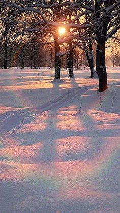 With Tenor, maker of GIF Keyboard, add popular Snow Flake animated GIFs to your conversations. Share the best GIFs now >>> Winter Szenen, I Love Winter, Winter Christmas, Winter Sunset, Gif Noel, Image Nature, I Love Snow, Snow Scenes, Winter Pictures