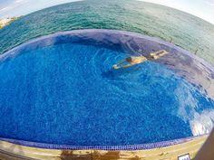 endless hotel pool Parasailing, Hotel Pool, Canario, Puerto Rico, Photo And Video, Park, Beach, Instagram, Maspalomas