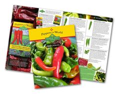 In our small seed company is offering our first-ever printed Seed Catalog which also features all of our seeds from our website, plus lots of recipes, pepper growing tips and fun chile facts. Heirloom Tomato Seeds, Heirloom Tomatoes, Stuffed Sweet Peppers, Stuffed Jalapeno Peppers, Tabasco Pepper, Pepper Seeds, Seed Catalogs, Organic Seeds, Scotch