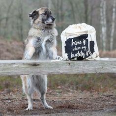 Im Rucksackbeutel versteckt sich der Buddy Büggel - die nachhaltig hergestellte Liegedecke für Hunde für unterwegs! My Buddy