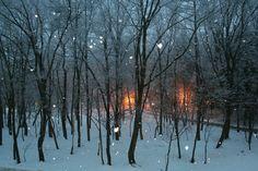 Snowy evening in Hakuba Japan.